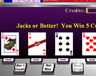 Casino critters video poker játék